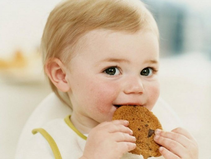 Печенье для малышей: когда вводить, покупать или готовить самим?