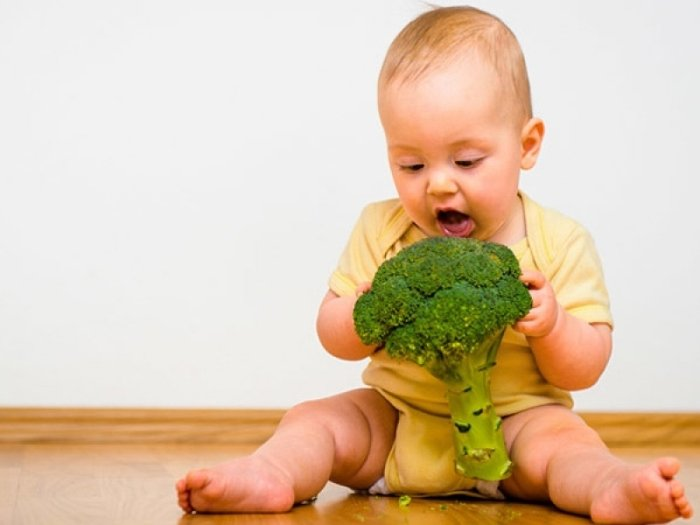 Польза брокколи для малыша: как выбрать, приготовить и с чем сочетать