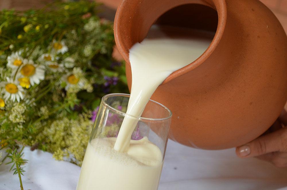 польза и вред козьего молока для грудничка