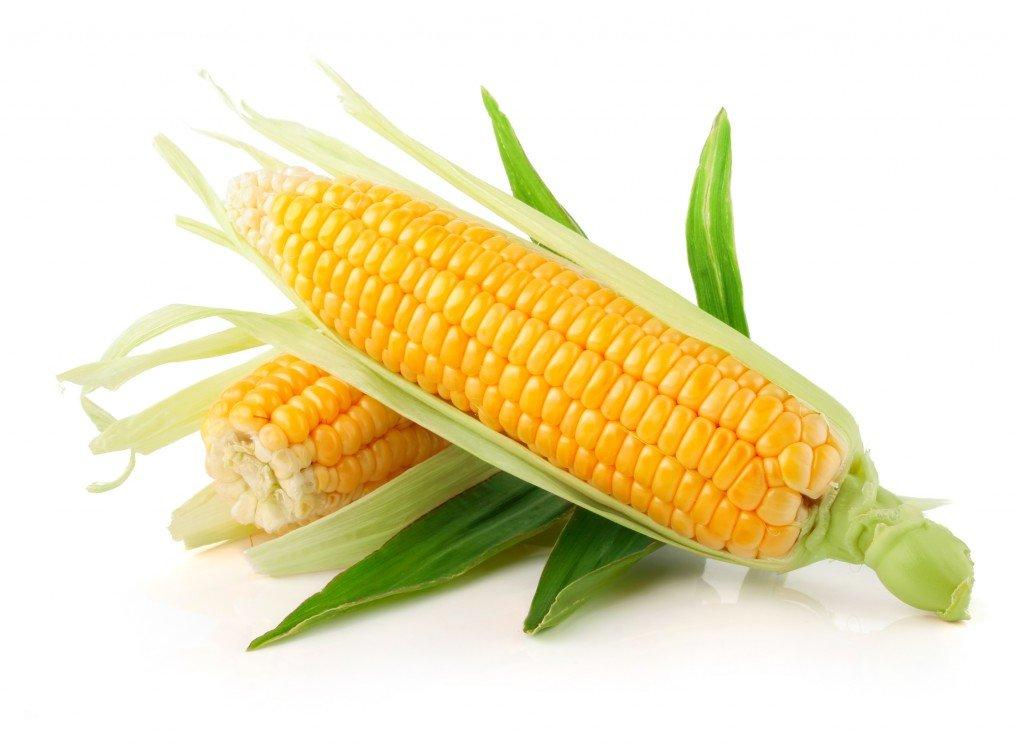 Кукуруза и ГВ: совместимы или нет?