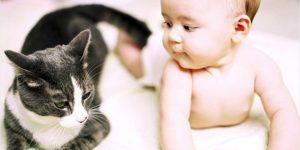 стригущий лишай у детей:как лечить