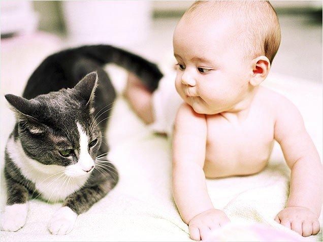 Лишай у младенца: как победить?